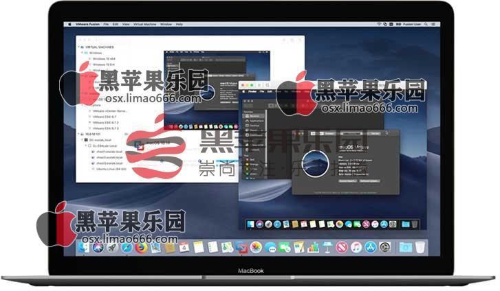 VMware Fusion 12 Pro v12.1.0 虚拟机专业破解版