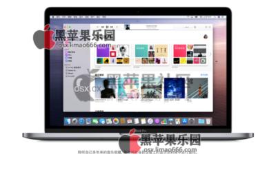 macOS Big Sur 11.2 (20D64) 正式版 自带OpenCore (OC引导) v0.6.5黑苹果原版镜像