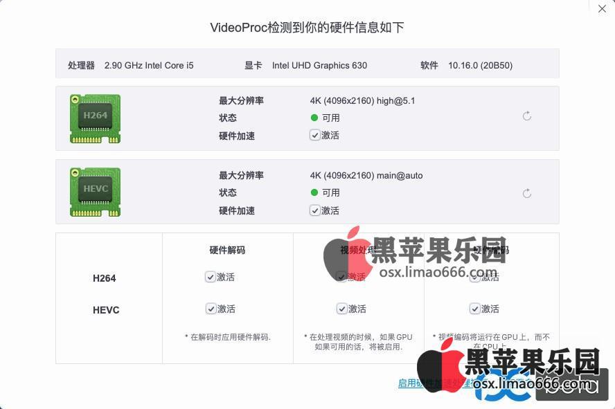Big Sur 11.01正式版 10400+UHD630核显 微星B460迫击炮