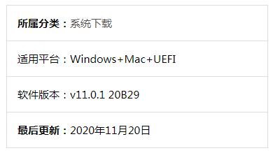 黑苹果MacOS Big Sur 11.0.1 20B29 原版 OpenCore 6.3 安装镜像